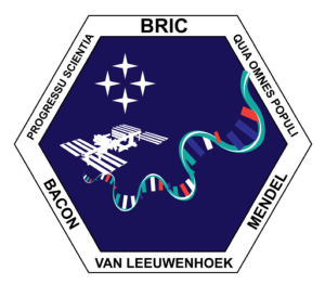 Logo for the BRIC experimental team at NASA.