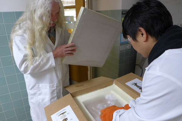 Botany professor Simon Gilroy (left) and postdoctoral researcher Won-Gyu Choi unwrap four canisters of plants packed in dry ice.